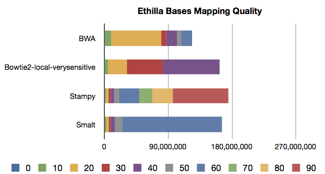 Ethilla_Bases_MQ